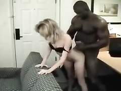 Brutal big black bull for a petite white milf
